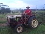 Vendo Trator Agrale 420 com 4 implementos