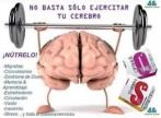 Kenyan Omnilife - Energia para o Cérebro e Aumento da Concentração