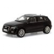 Audi Q5 2010 Paudi Models 1:18