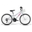 Bicicleta Caloi Ceci Aro 24