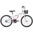 Bicicleta Caloi Ceci - Aro 20 - Freio V - Brake - 1 Marcha