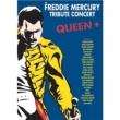 Dvd The Freddie Mercury Tribute Concert ( 3 Dvds ) 6951719