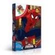 Homem Aranha Quebra Cabeça de Pintar 100 Peças - Toyster