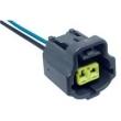 Tc 1021039 Chicote Reparo 2 Vias - Sensor Canister