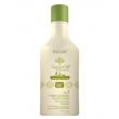 Argan Oil System New Advanced Formula Inoar - Shampoo de Tratamento 250ml