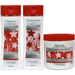 Kit Shampoo 350 ml Condicionador 350 ml e Máscara de hidratação Capilar para Cabelo Tingido 500 g