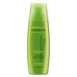 Midollo di Bamboo Restructuring Alfaparf - Shampoo - 250ml