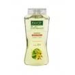 Shampoo Tília e Hamamélis Payot ( 300ml ) Cabelos Oleosos
