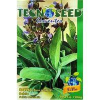 Semente de Salvia para Tempero Tecnoseed 150 mg
