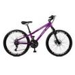 Bicicleta 26 M. 21 M Master Bike Free Rider F / disco A - 36 21 M