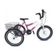 Bicicleta Triciclo aro 20 Florata