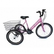 Bicicleta Triciclo aro 24 Borboleta 21 marchas