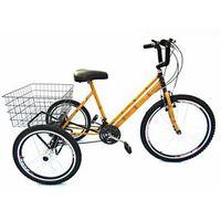 Bicicleta Triciclo aro 26 Bambu 21 marchas