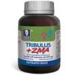 ZMA + Tribulus Terrestris Zinco Magnésio e Vitamina B6