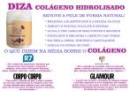 Diza Colágeno Hidrolisado - Importado